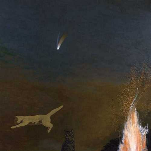 DAVID INSHAW Cats and Comet, 1998-2002