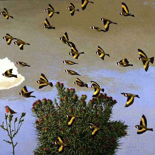 DAVID INSHAW Goldfinches, 2003-04