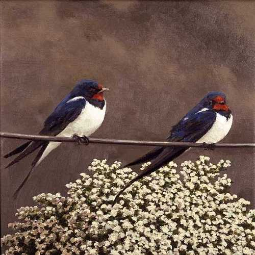 DAVID INSHAW Swallows, 2004