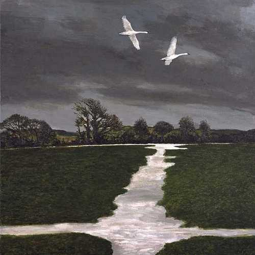 DAVID INSHAW Lower Bockhampton I, 2007